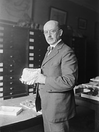 Dr. J.W. Gidley of Smithsonian Institute with tooth of extinct elephant, 10-6-24 LCCN2016849571.jpg