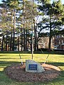 Dr. Thomas C. Dent memorial - Gordon College - DSC02700.JPG