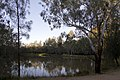 Dubbo NSW 2830, Australia - panoramio (159).jpg