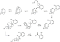 Duff Reaction Mechanism3.png