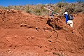 East side of the Caballo Mountains - Flickr - aspidoscelis.jpg