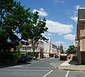 Easton Pennsylvania street with tree and truck.jpg