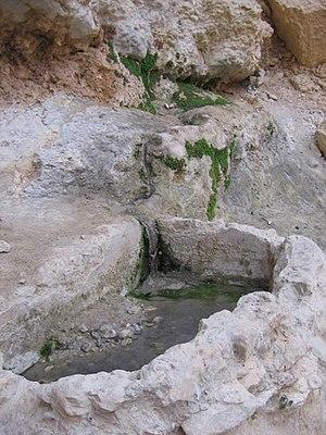 Ein Netafim - The basin in Ein Netafim
