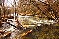 El río Manzanares (32972459575).jpg