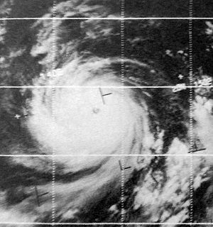 1969 Pacific typhoon season - Image: Elsie Sep 2319690413z ESSA9
