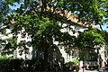 Epensteinstraße 13 (Berlin-Reinickendorf).JPG