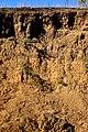 Erosion - panoramio (4).jpg