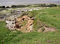 Erosion gully, Lower Heysham - geograph.org.uk - 438550.jpg