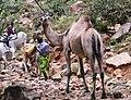 Ethiopia (10775034716).jpg