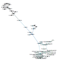 EtymTreeGraph pawNLLarge (Gephi blue distance-PDF-Snapshot).png