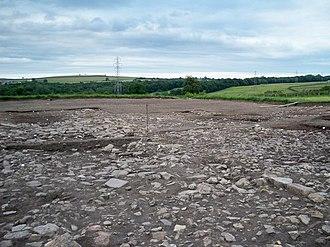 Vinovia - Excavations at Binchester