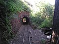 Exiting tunnel at Driving Creek Railway.jpg