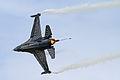 F-16A MLU Fighting Falcon 08 (5969176739).jpg