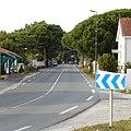 FR 17 Rivedoux-Plage - Route départementale 735.jpg