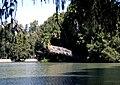 Fairmount park leaning palm 2009-09 1.jpg