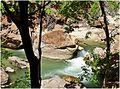 Fall of Water (2), Zion NP, Riverside Walk 5-1-14zua (14480835684).jpg