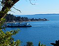 Fauntleroy Cove and Brace Point.jpg