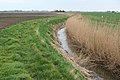 Field Drain looking over to Old Halves Farm - geograph.org.uk - 748978.jpg