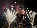 Fireworks (6700318809).jpg
