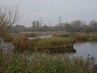 The Great Bittern watchpoint, Seventy Acres lake, Fishers Green