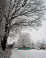 Flickr - Per Ola Wiberg ~ mostly away - Last snowfall hopefully.jpg