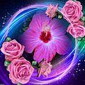 Flor rosada.jpg