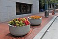 Flower planters on Portland Mall 5th-Main 2009.jpg