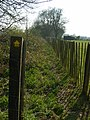 Footpath in Ringsfield - geograph.org.uk - 409019.jpg