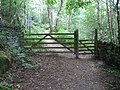 Footpath into Hay Wood near Nether Padley - geograph.org.uk - 1455292.jpg