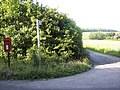 Footpath to Higher Barn Cottages - geograph.org.uk - 459951.jpg