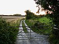 Footpath to Milton Lilbourne - geograph.org.uk - 1224478.jpg
