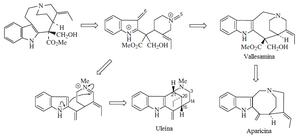 Apparicine - Image: Formación de uleina y aparicina