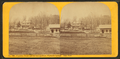 Franklin House and its surroundings, Highgate Springs. East view, by T. G. Richardson.png