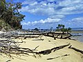 Fraser Island West beach - panoramio.jpg