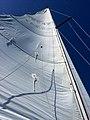 Full Sail (18782767042).jpg