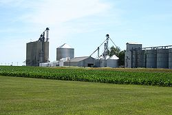 Grain elevators in the unincorporated hamlet of Galesville, in section 32 of Sangamon township.