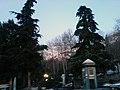Gate of Jamshidiyeh Park - panoramio.jpg