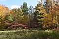 Gatineau Park, October 2018 (42) (44607392504).jpg