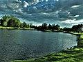 Gatineau Park Landscape View.jpg