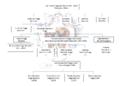 Genealogia Banchieri Poggi1.png