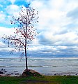 Georgian Bay from Thornbury, Ontario.jpg