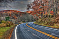 Gfp-wisconsin-wildcat-mountain-state-park-autumn-road.jpg