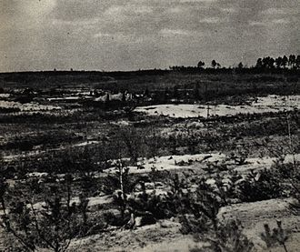 "Palmiry massacre - ""Glade of death"" near the Palmiry. Post-war photography"