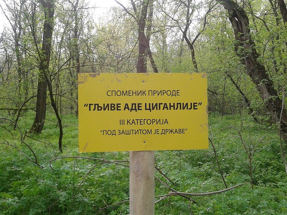 Gljive Ade Ciganlije sign