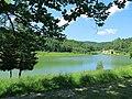 Goč - panoramio (10).jpg