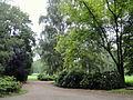Grüneburgpark, Frankfurt - DSC01545.JPG