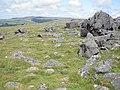 Granite boulders, near White Tor - geograph.org.uk - 1386292.jpg