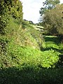 Grassy track along Llanerch Brook - geograph.org.uk - 991408.jpg