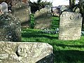 Gravestones at Inwardleigh - geograph.org.uk - 331690.jpg