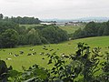 Grazing land - geograph.org.uk - 549354.jpg